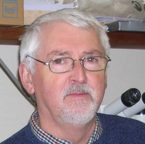 Michael Baillie